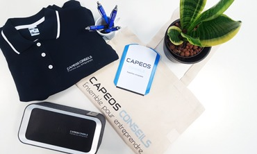 Goodies CAPEOS CONSEILS cabinet d'expertise comptable